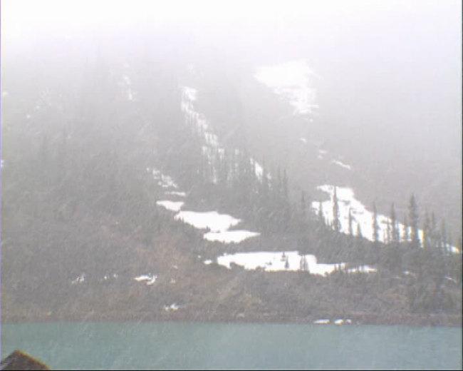 下雪雪中高山青松小湖视频背景素材