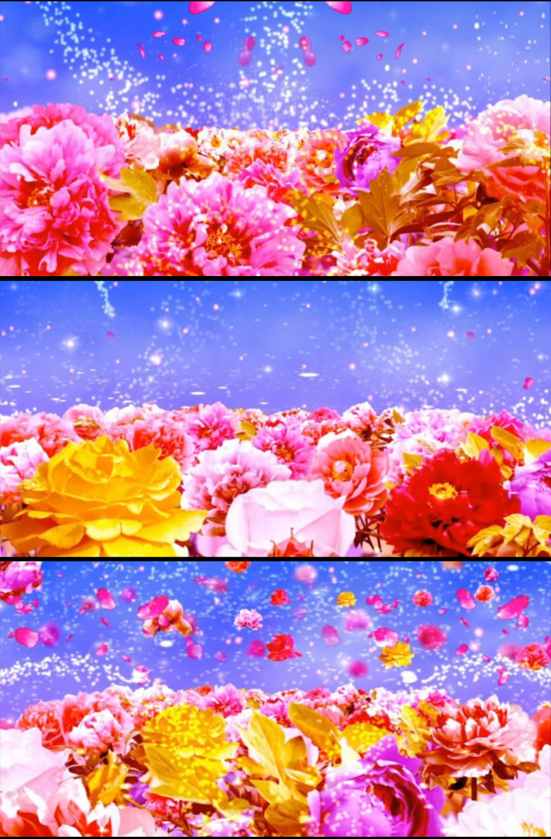 花瓣飘落动态背景高清视频素材模板 MP4格式下载 视频239.93MB 动态 特效 背景 背景视频大全