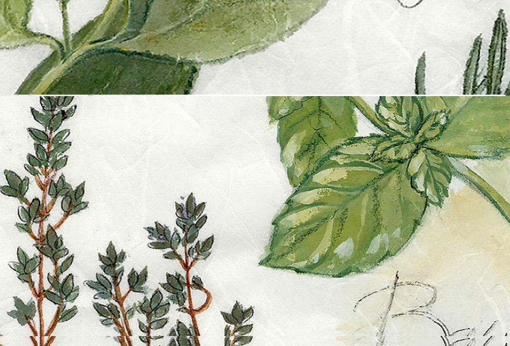 小清新绿色叶子树叶龟背竹叶子植物英文油画
