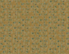 地板木板纹理高清木纹材质贴图图片素材 模板下载 1.26MB 其他大全 生活工作