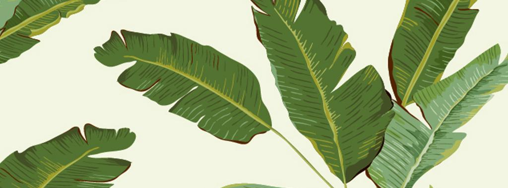 绿色清新自然地中海手绘绿色芭蕉叶欧式墙纸