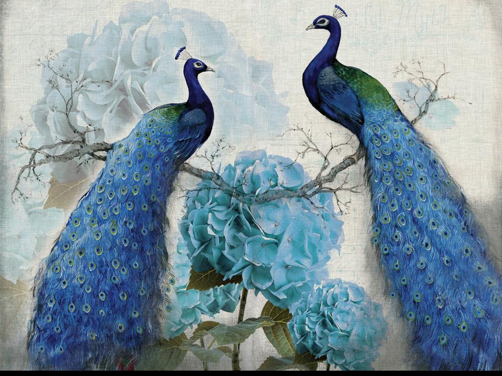 背景墙|装饰画 电视背景墙 欧式电视背景墙 > 蓝色孔雀复古花卉油画图片
