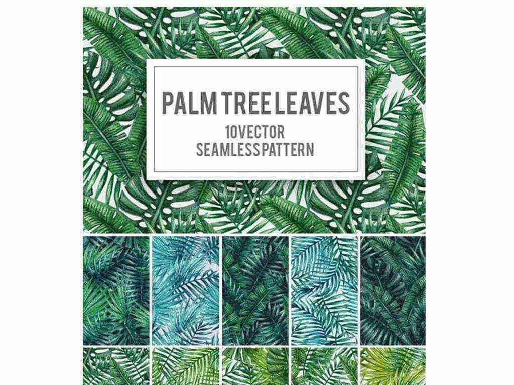 绿色热带植物棕榈树叶无缝图案矢量素材
