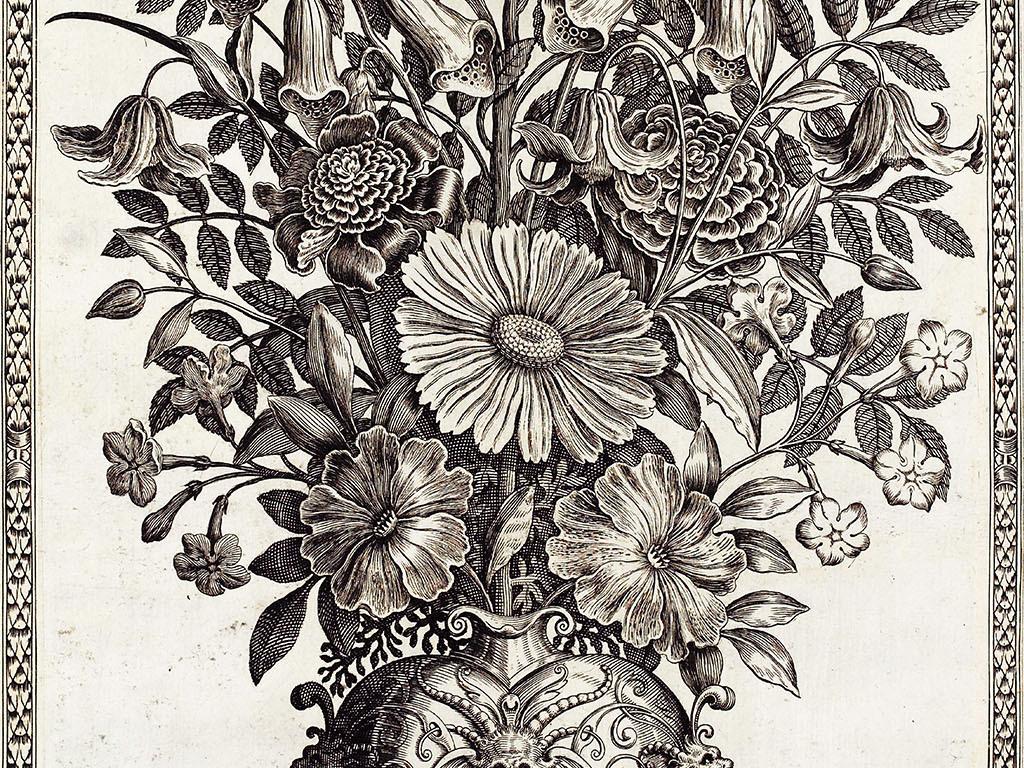 设计作品简介: 高清欧式花卉素描玄关装饰画 位图, rgb格式高清大图