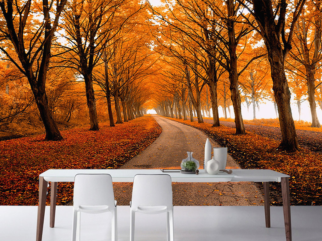 叶子落叶大树树林小道道路卧室工装风景背景墙餐厅酒店自然小路