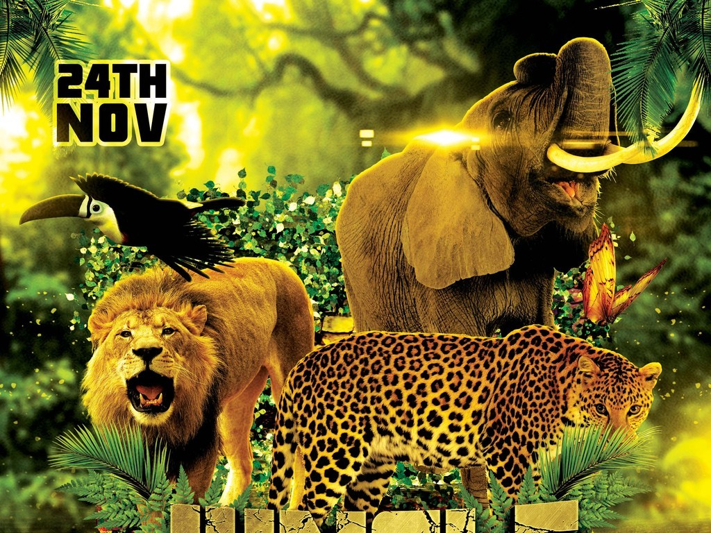 野生动物园动物园广告动物园图片卡通动物园动物园背景动物园羚羊广州