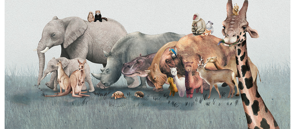 动物世界手绘卡通北欧背景墙装饰画