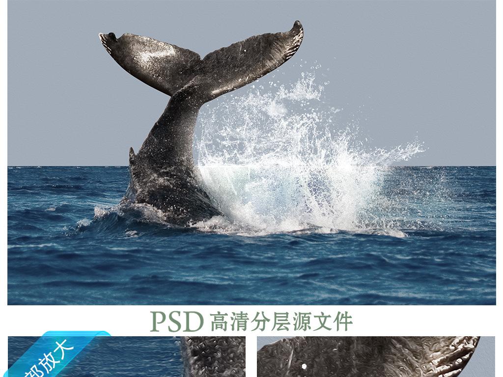 鲸鱼大海油画艺术背景墙装饰画