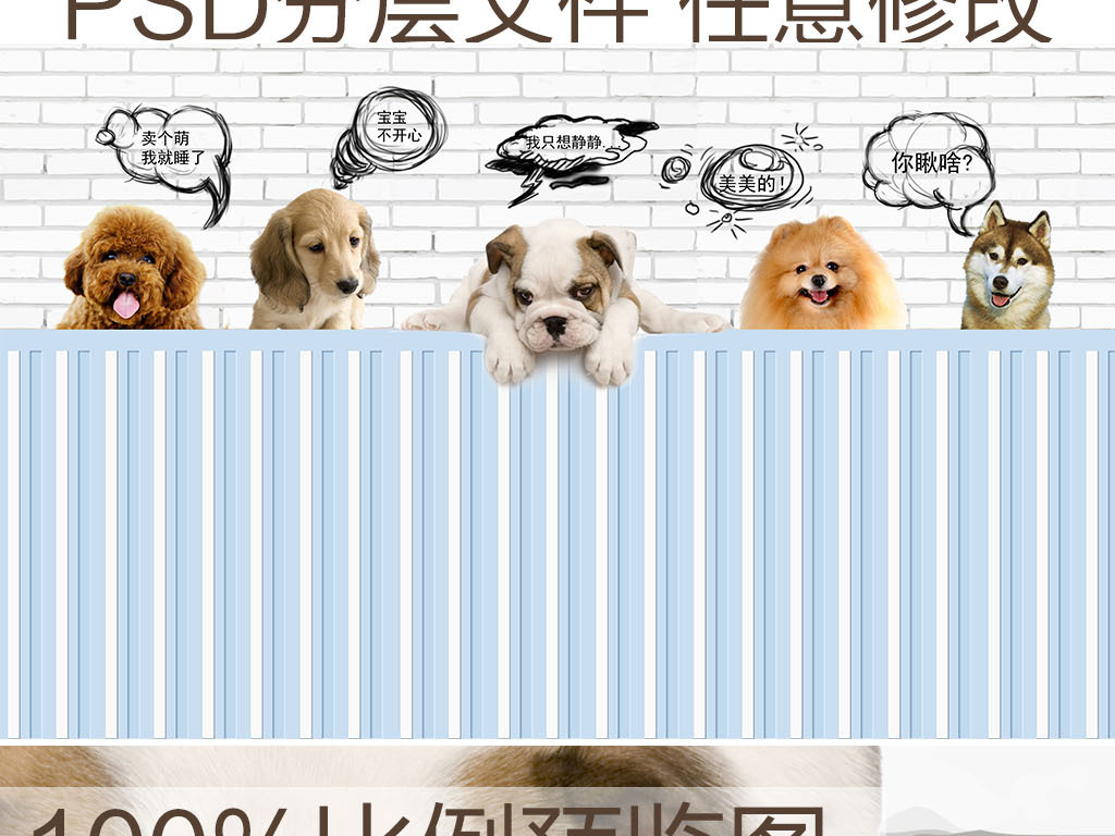 高清可爱宠物狗狗背景墙装饰画