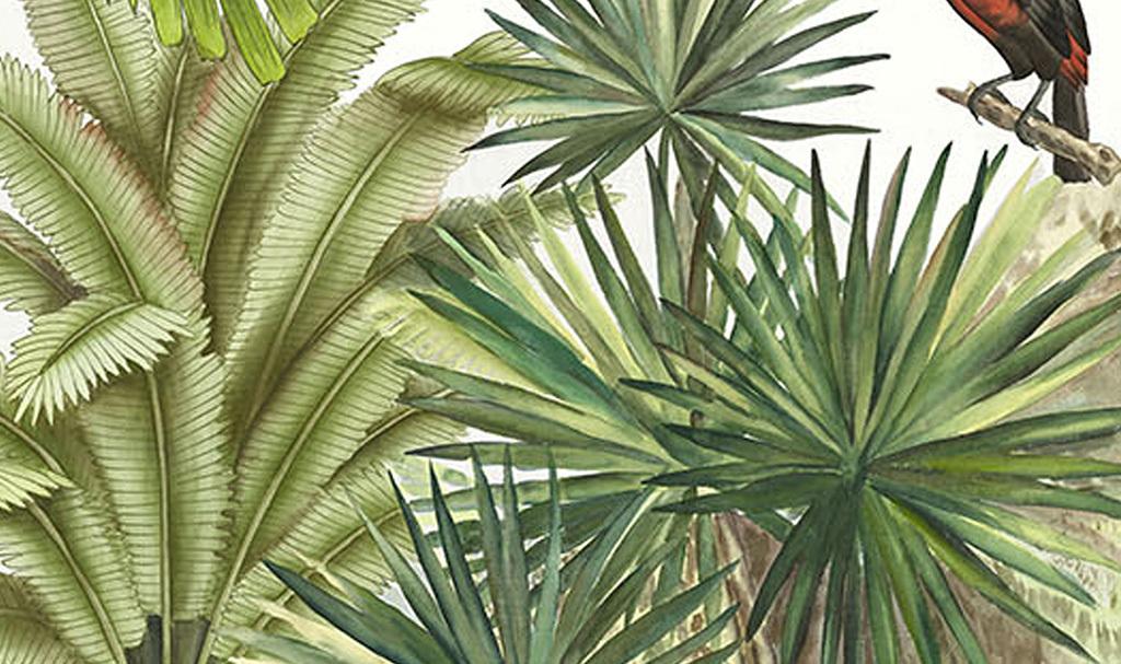 热带雨林绿色植物花鸟油画背景墙