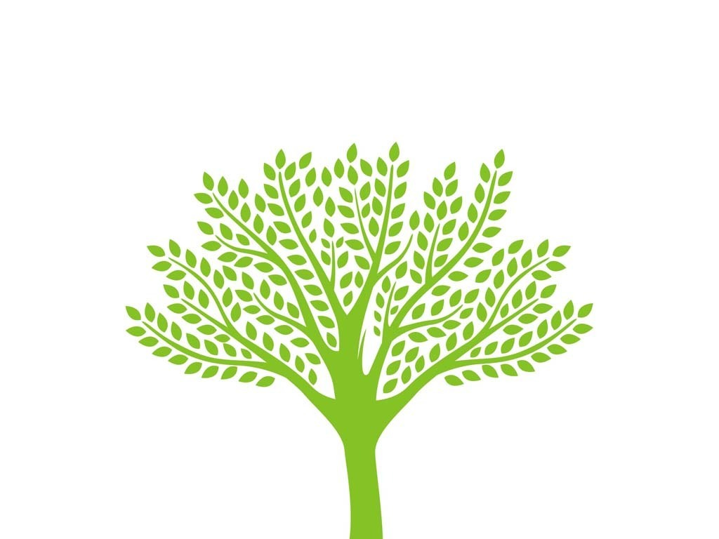 树干树木生长成长树智慧树tree树木卡通可爱树木树林小