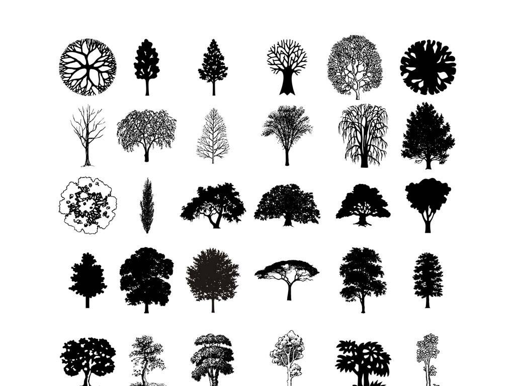 松树柏树松柏矢量素材行道树景观树素材