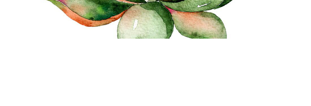 唯美手绘水彩多肉植物装饰画六连画