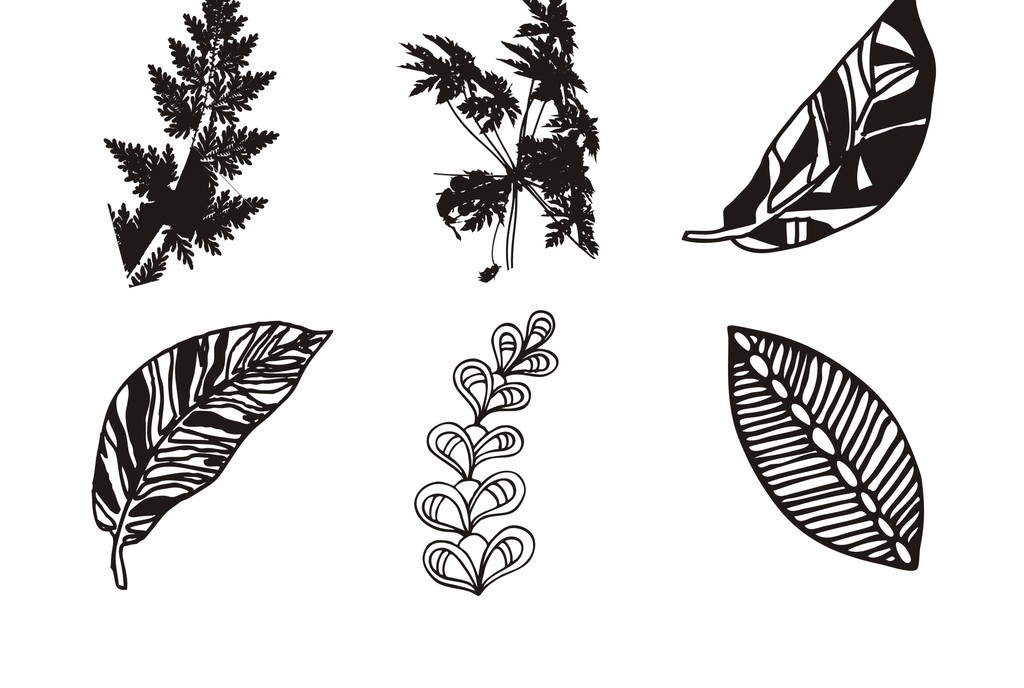 植物花卉简笔画(图片编号:16036349)_树叶_我图网