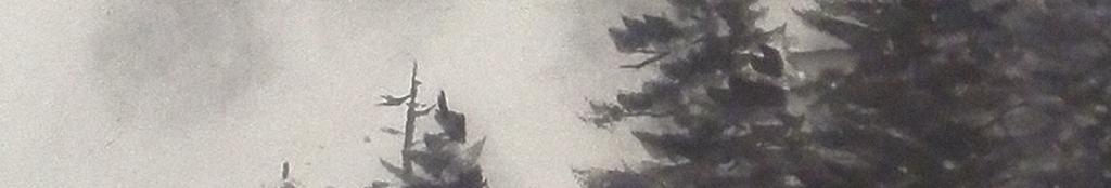 238中国风黑白装饰画山峰森林大气.