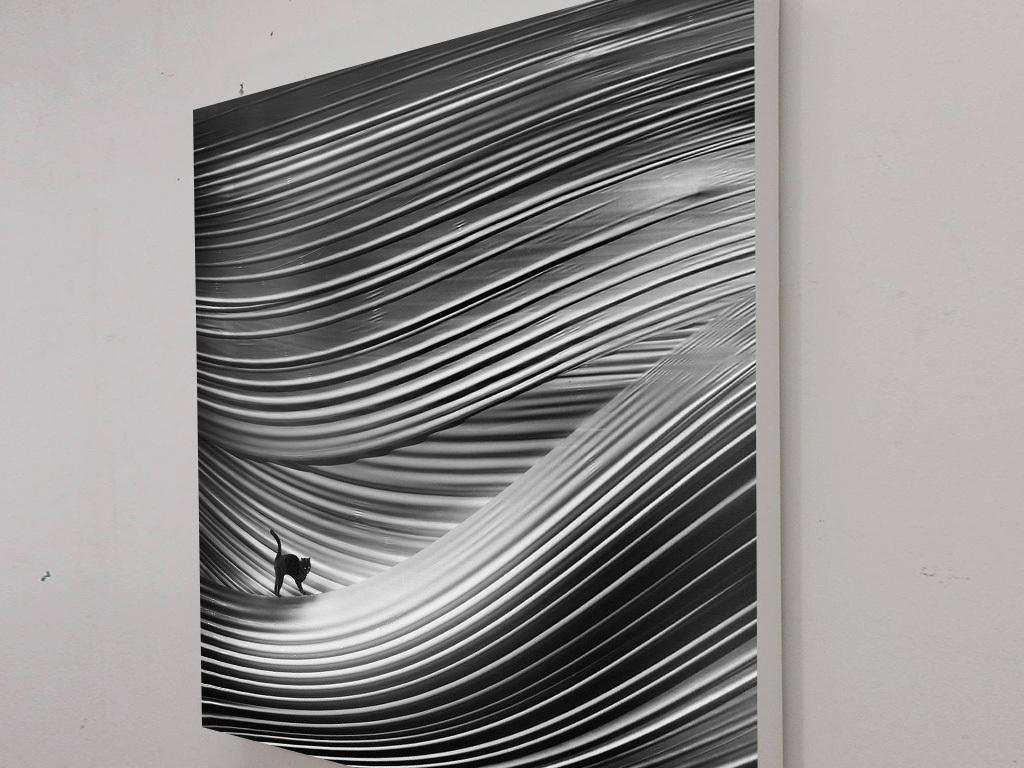 北欧客厅黑白沙漠线条猫咪风景绘画装饰画
