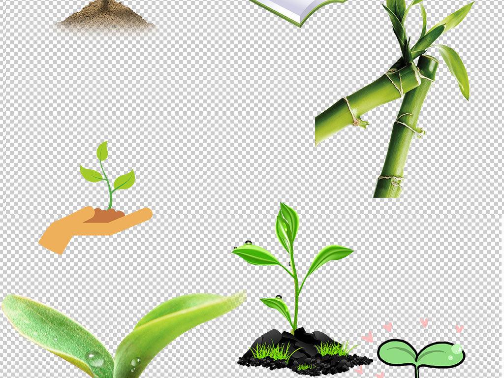 图片小草的图片卡通小草卡通小草图片大树和小草图片小草发芽小花小草