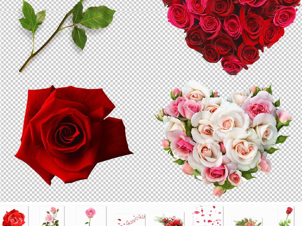 红色玫瑰花七夕节图片海报素材图片