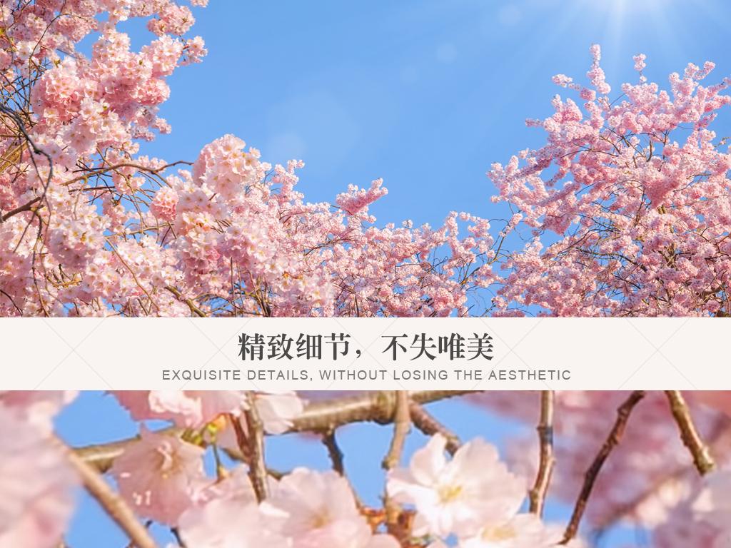 现代清新简约天空樱花天顶壁画背景墙图片设计素材 高清模板下载 58.74MB 植物花卉吊顶大全