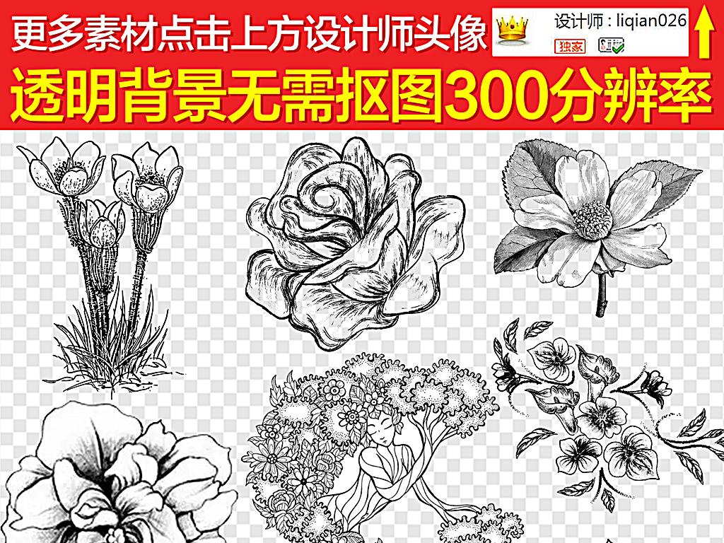花素描黑白素描花素描手绘花