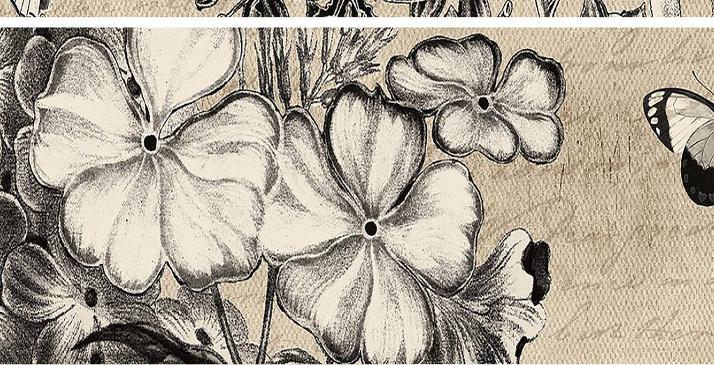 黑白蝴蝶花枝装饰画图片