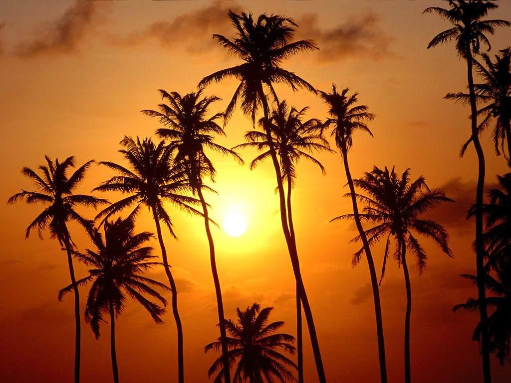 空夕阳黄昏晚霞世界风景风光摄影图片素材 模板下载 3.83MB 其他大
