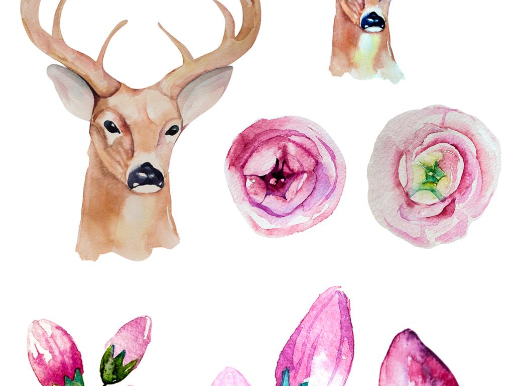 高清森系水彩手绘鹿头花卉png免扣图片素材