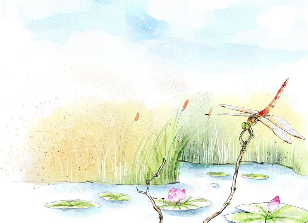 唯美春天芦苇池塘边蜻蜓飞插图海报设计