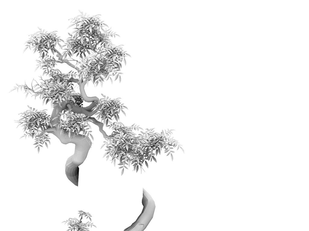 建筑手绘线稿 植物