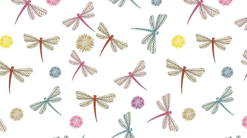蜻蜓简笔画大全带颜色