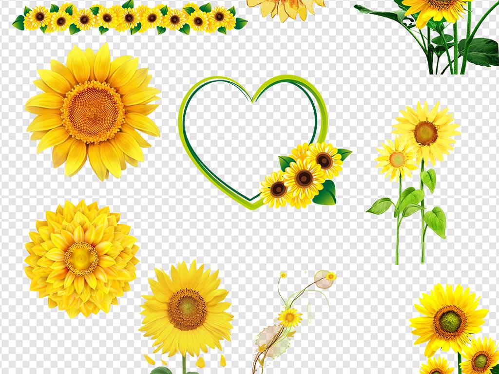 卡通手绘向日葵太阳花素材