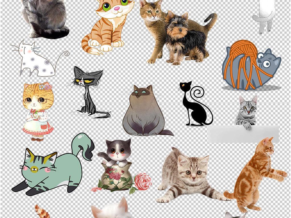 手绘动物猫咪表情包卡通