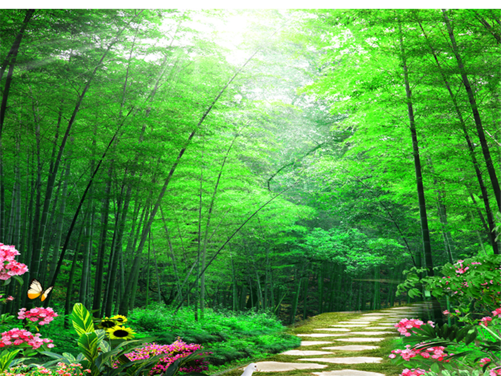 自然风景竹林小径鲜花沙发背景墙下载