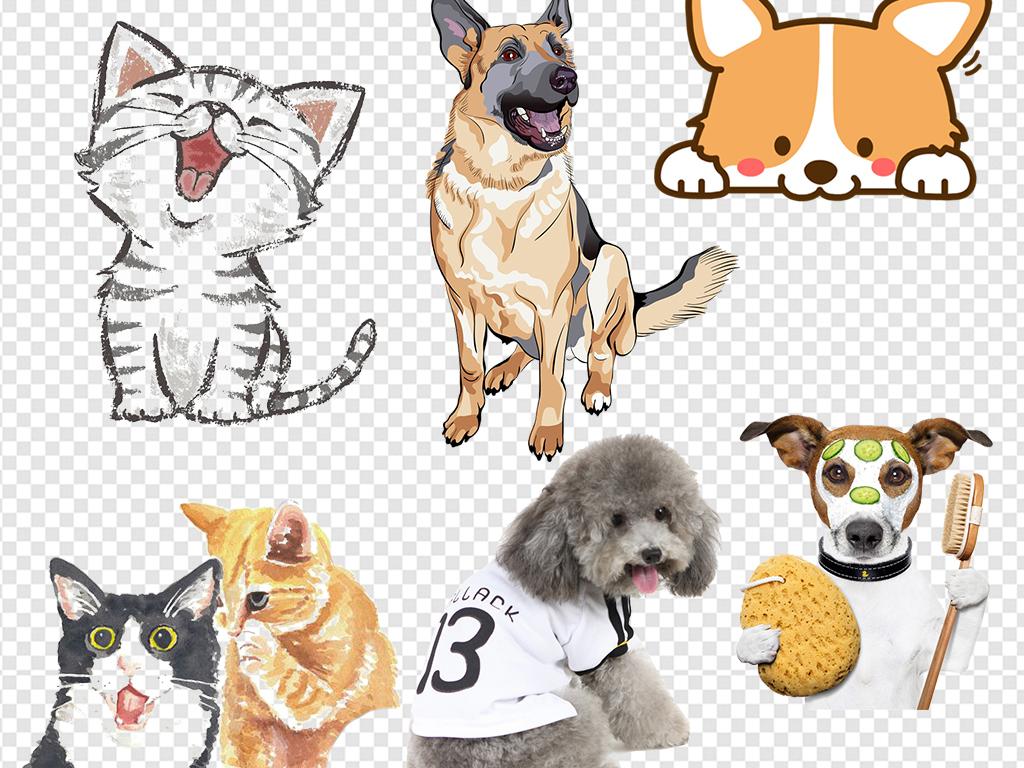 小猫咪素描猫招财猫龙猫动物小狗卡通图片可爱宠物
