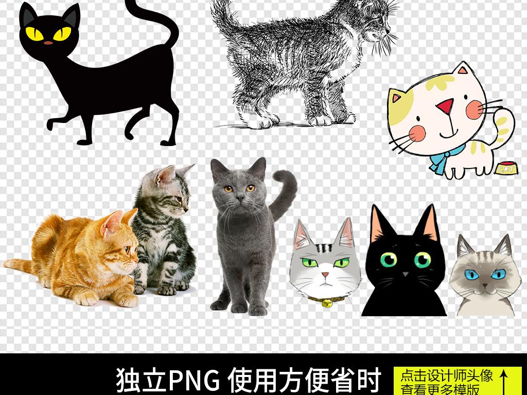 卡通可爱猫咪小猫宠物png素材