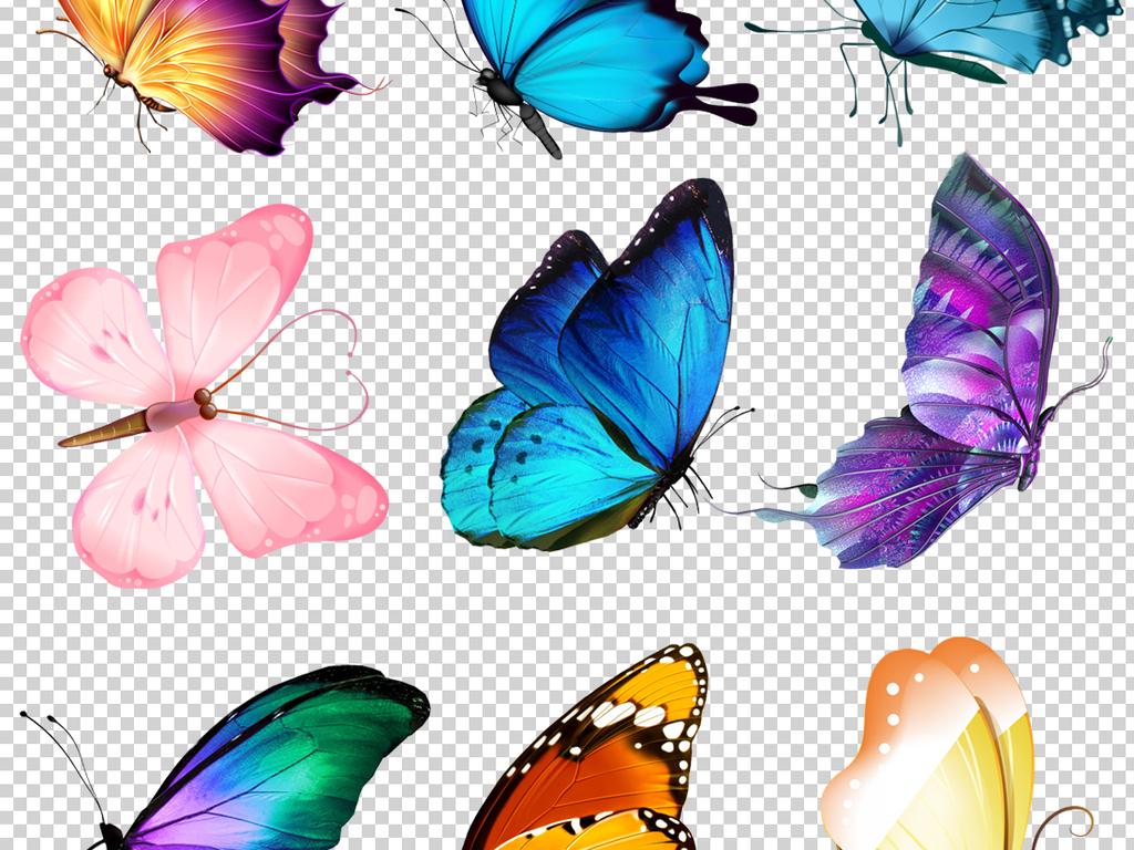 唯美手绘蝴蝶png透明背景免扣素材