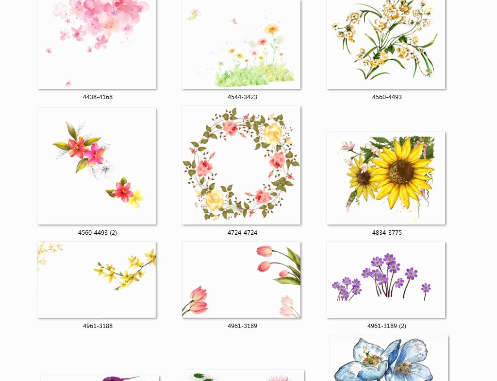 素材花卉鲜花花卉手绘鲜花手绘手绘花形手绘花藤花手绘墙手绘蔷薇花