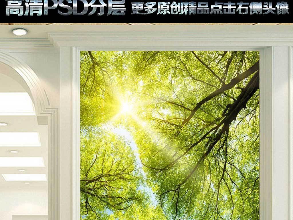 阳光灿烂树林风景玄关装饰画