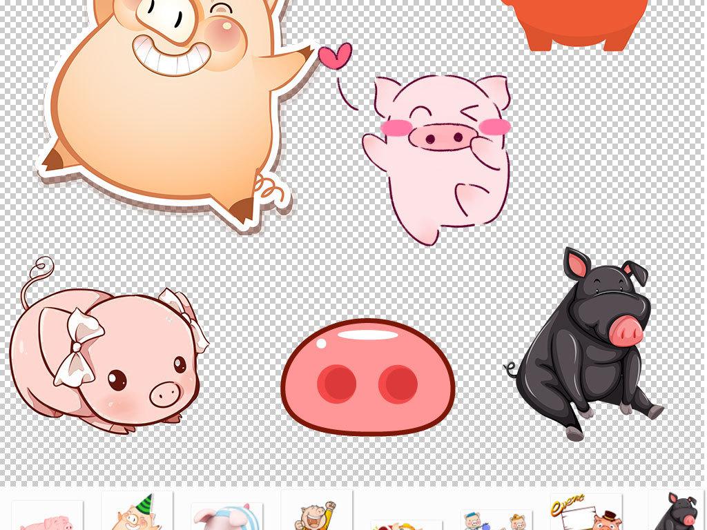 小猪猪素材宠物猪可爱萌猪