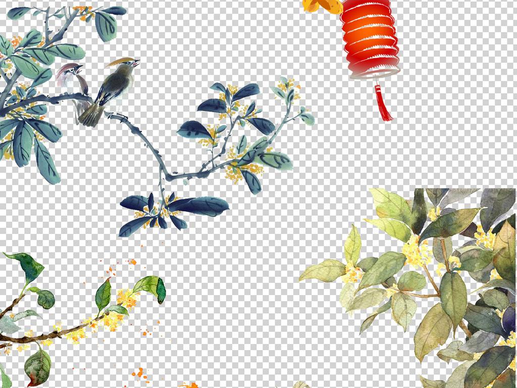 免抠元素 自然素材 花卉 > 中国古风手绘桂花png透明背景免扣素材