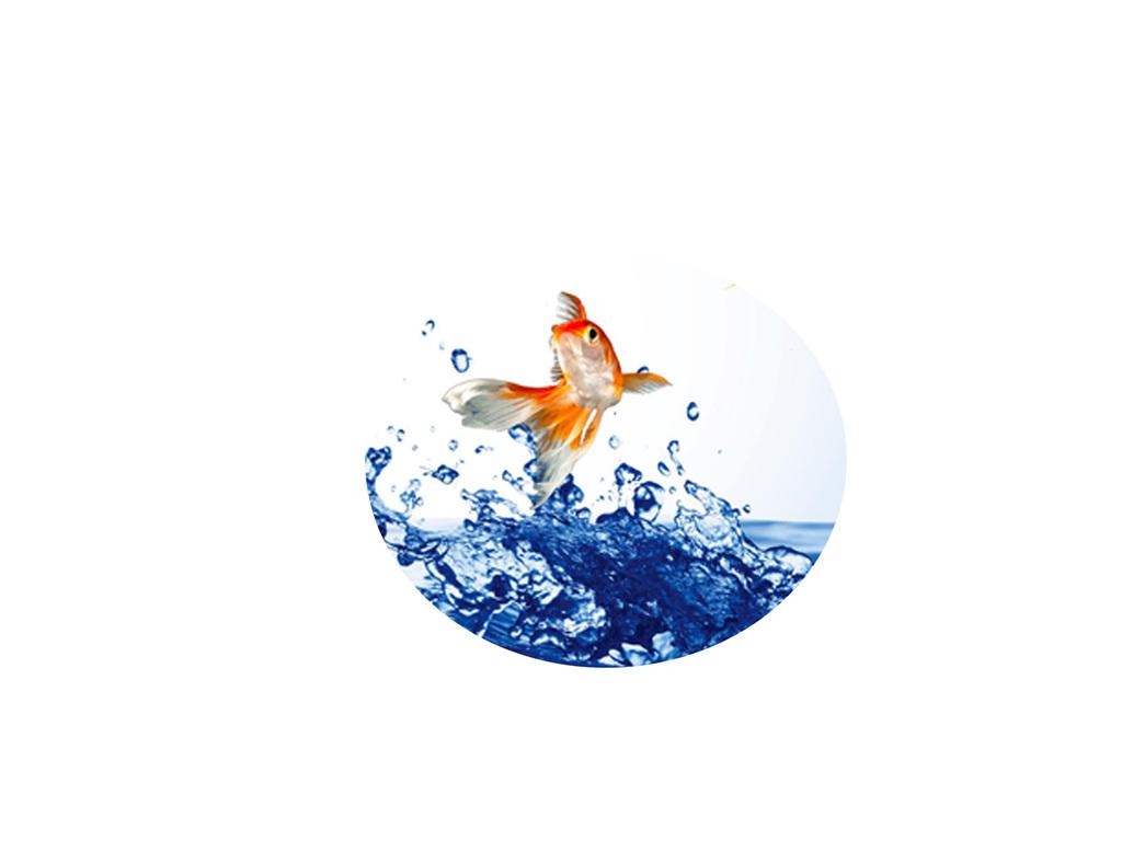 创意立体客厅3D电视背景墙3D水滴3D鱼3D壁纸立体漫画金鱼跳动