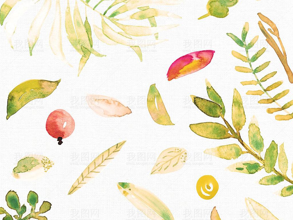 png eps水彩植物叶子合集设计素材包 矢量图, cmyk格式高清大图,使用