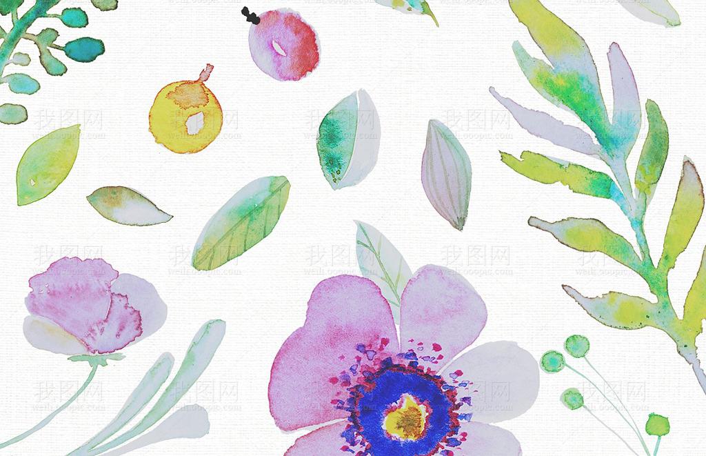 png+eps水彩植物叶子合集设计素材包(图片编号:)_树叶