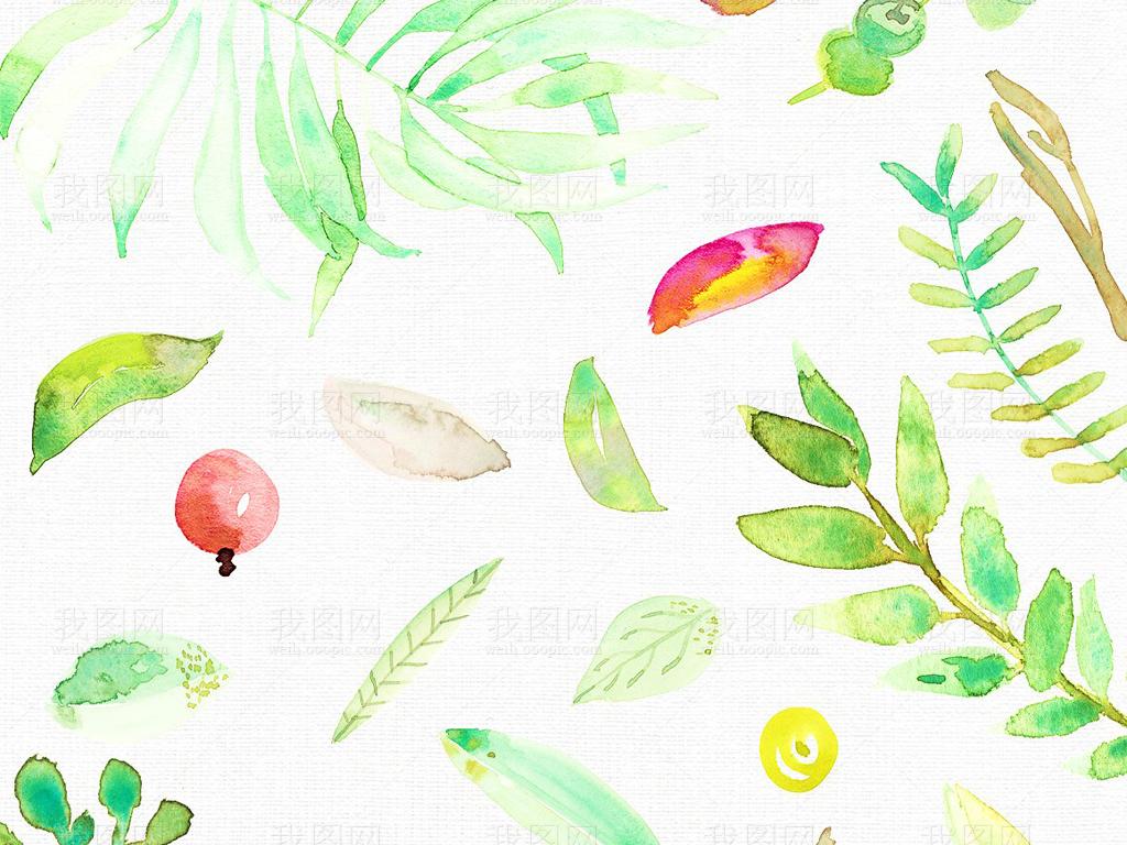 手绘小清新植物边框