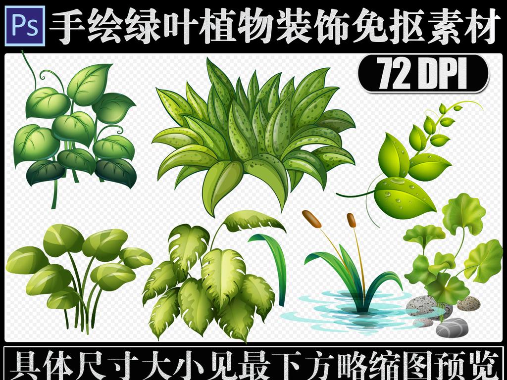 手绘绿色植物绿叶png免抠海报必备素材