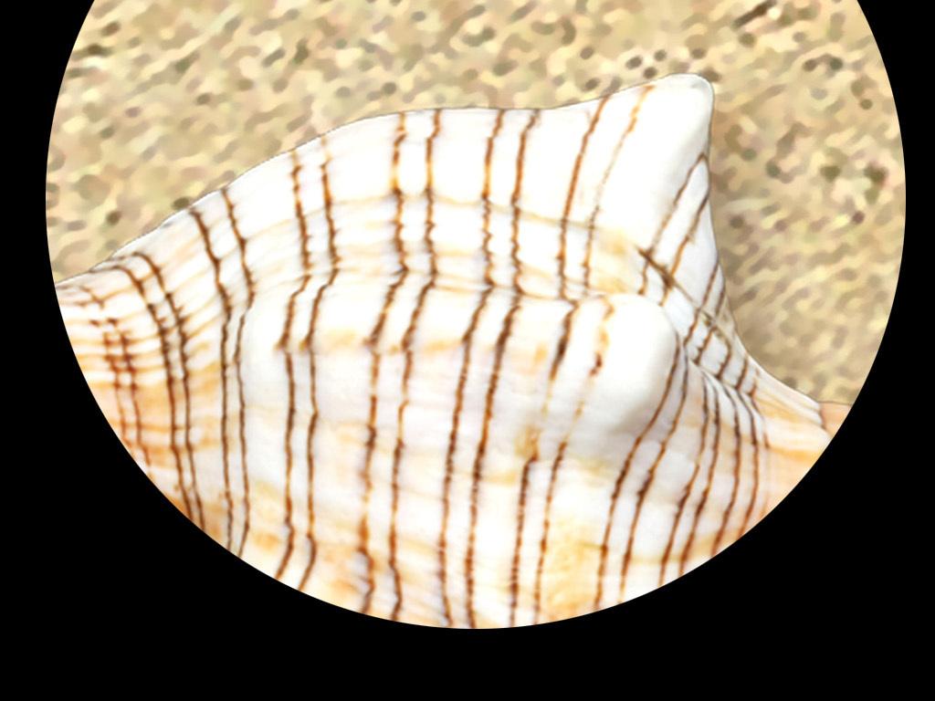 海洋鹅卵石路3d地板