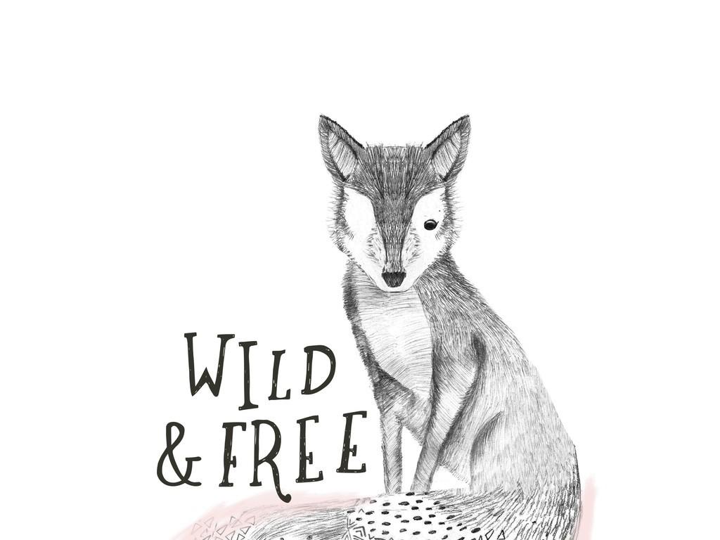 设计元素 自然素材 手绘卡通动物素描狐狸