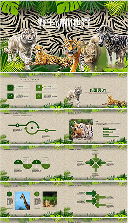 PPT野生动物园