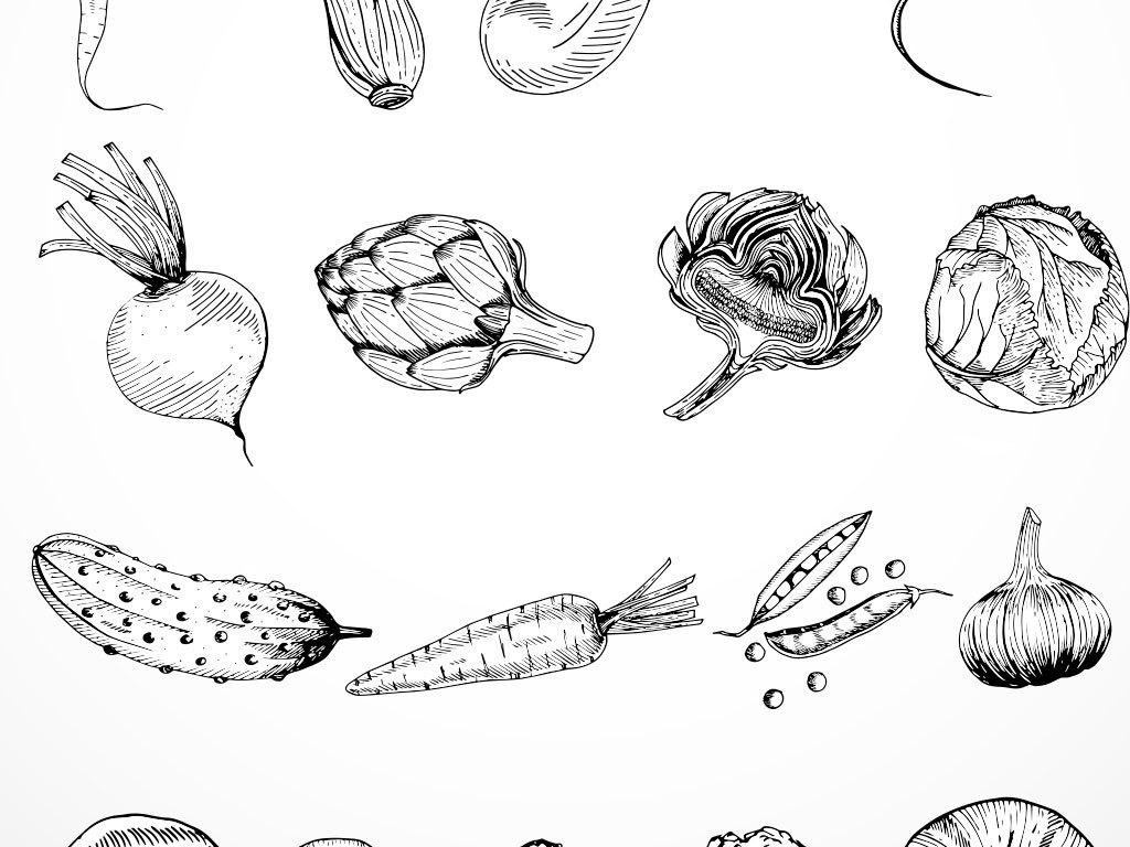 手绘黑白线稿蔬菜矢量图
