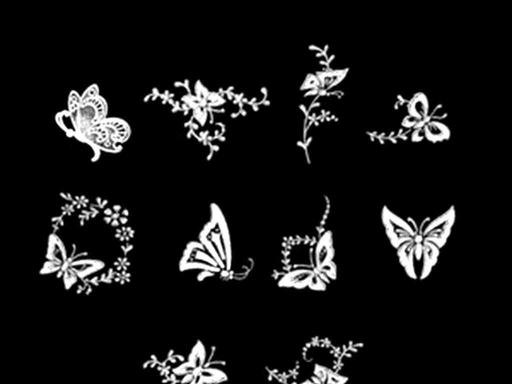 蝴蝶照片大全图片素材